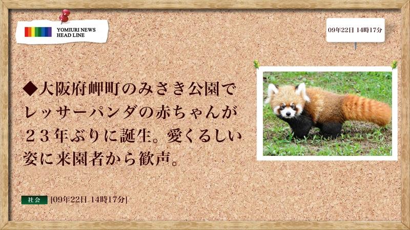 読売新聞全画面ニュース【Cタイプ】