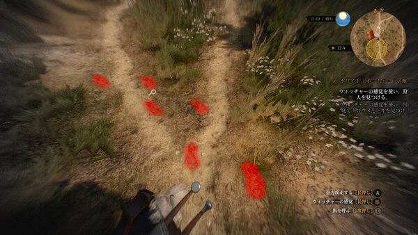 ウィッチャーの感覚を使うと、現場に残された痕跡などを追跡できる。真犯人を突き止めて、犯人はお前だ!と兵士に突き出すことも、賄賂を受け取って見逃すことも可能だ