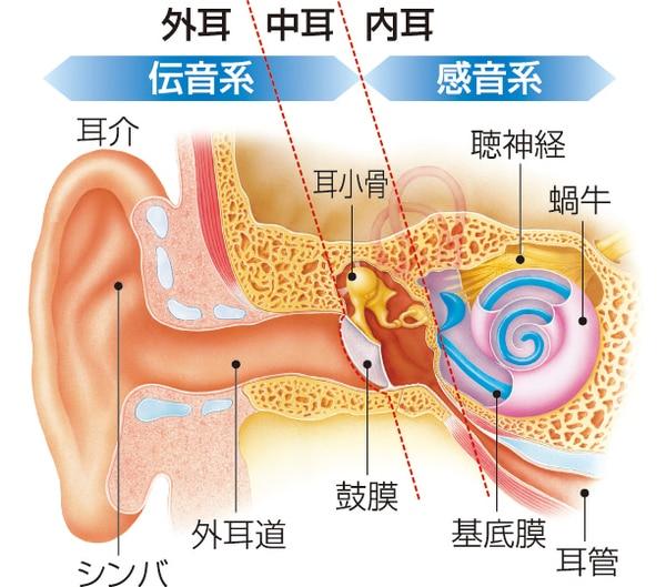 難聴の3つの種類