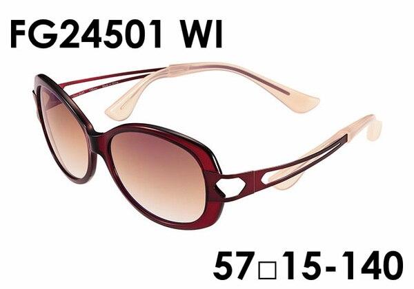 FG24501 WI