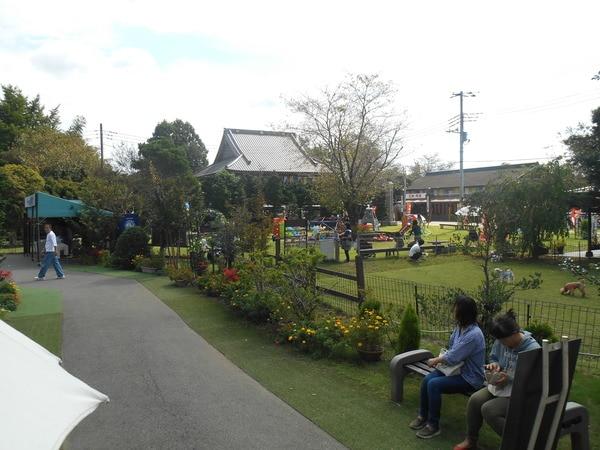 ペット霊園前の芝生広場・ドッグラン