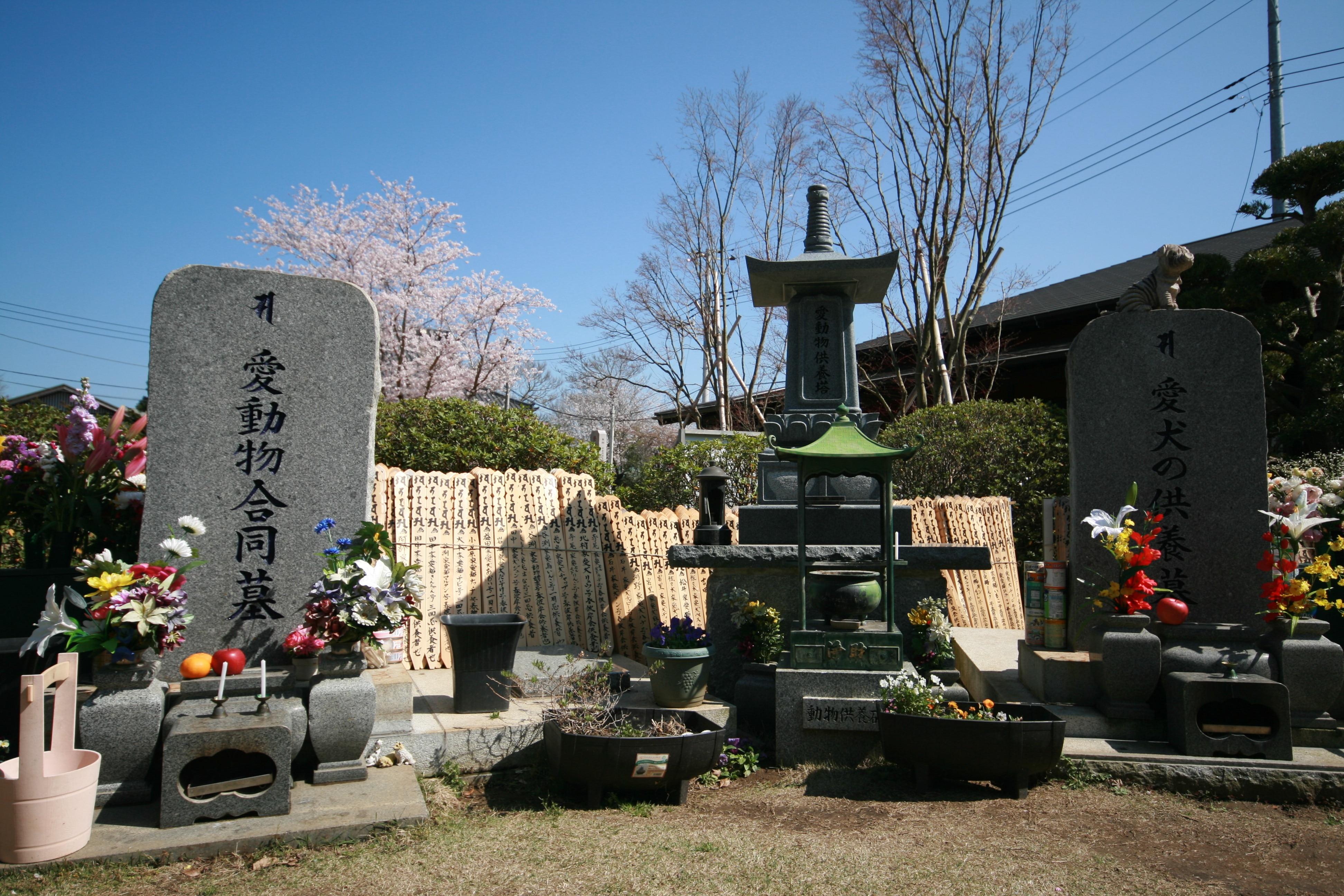 合同墓・愛動物合同墓は全動物の合祀のお墓