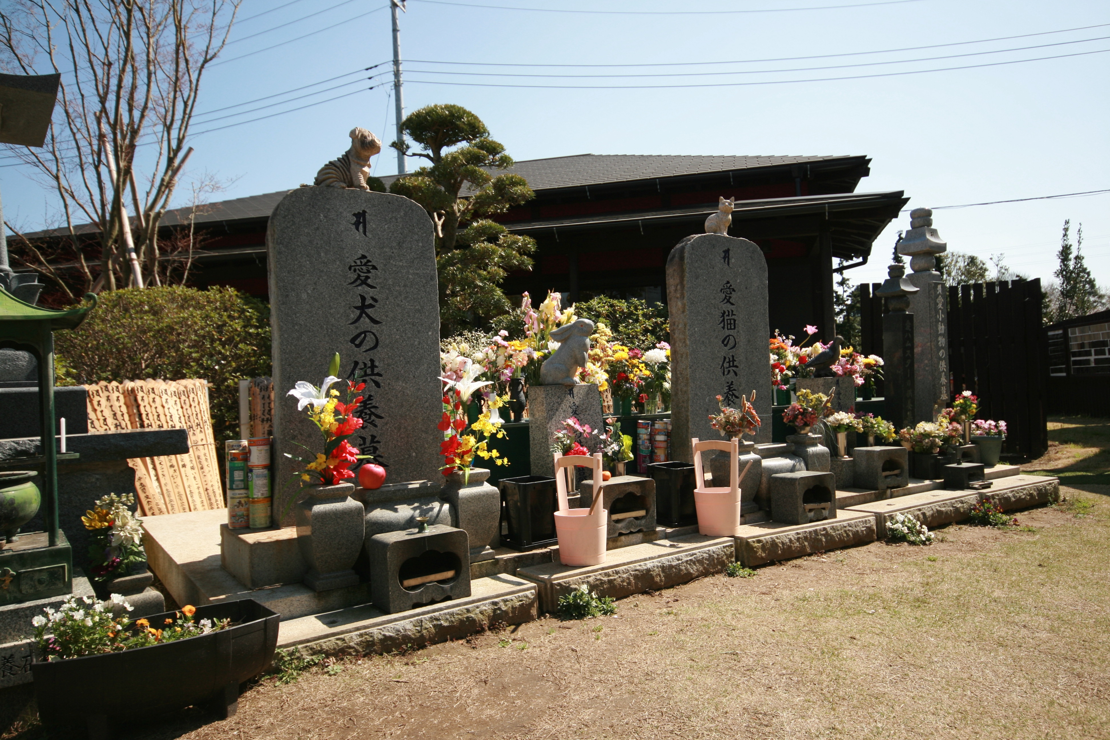 犬・猫・兎・鳥・小動物、動物種別専用の合祀墓