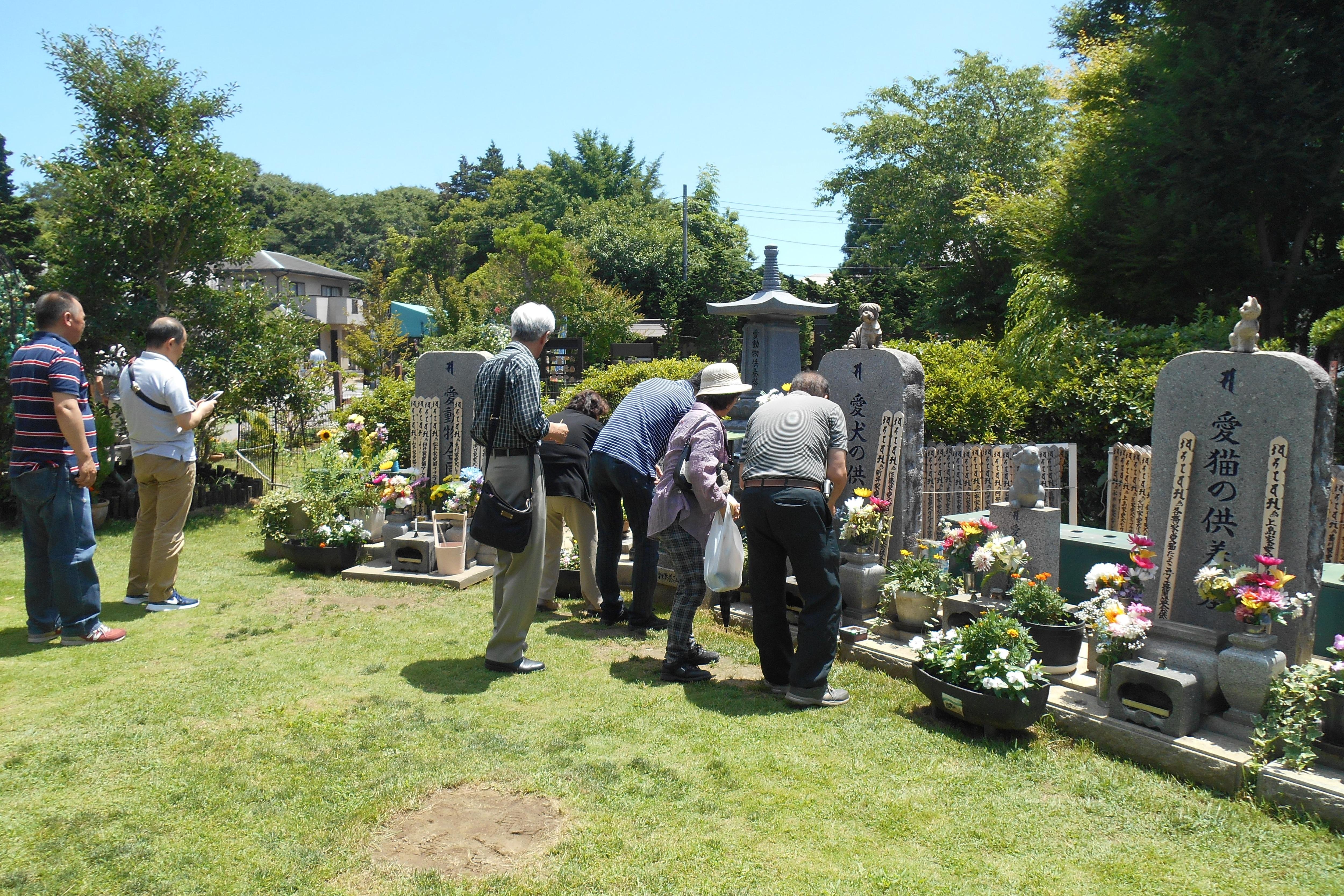 ペットお盆の屋外墓地お墓詣りのようす