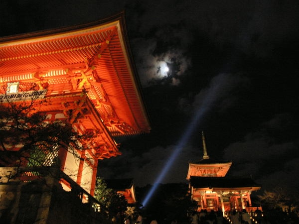 ライトアップと朧月