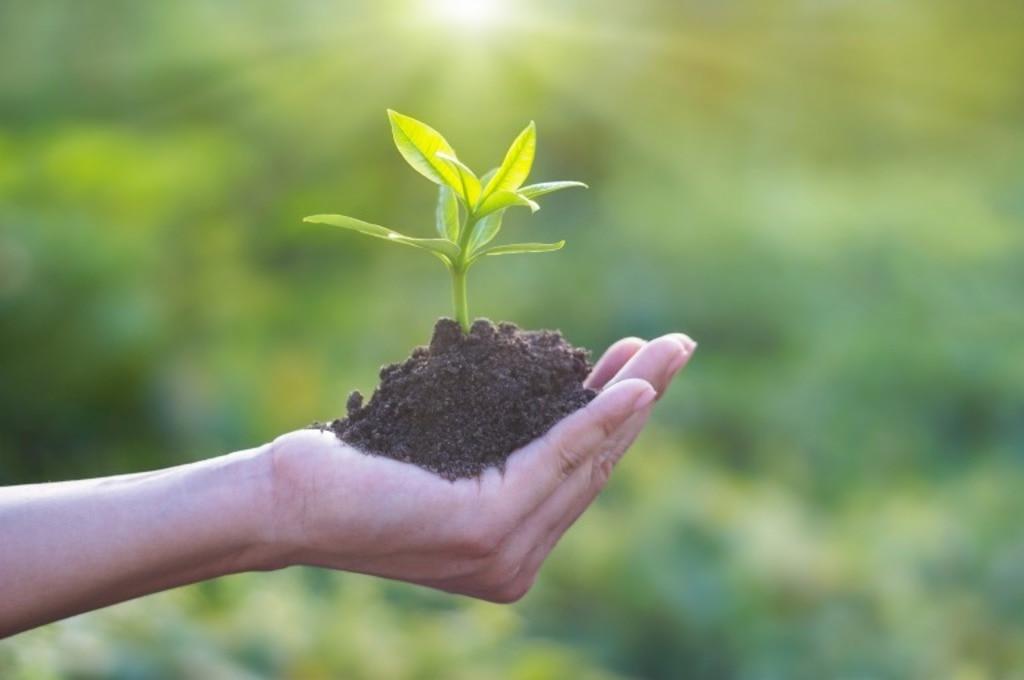 腸内環境には話題の土壌菌を!土壌菌の基礎知識と効率の良い摂取方法 ...