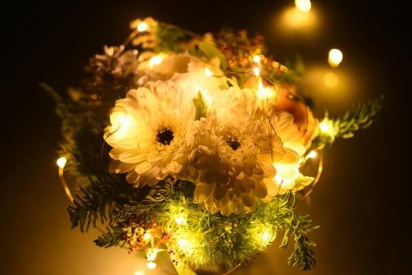 イルミネーションライトをお花にかけたところ(アップ)