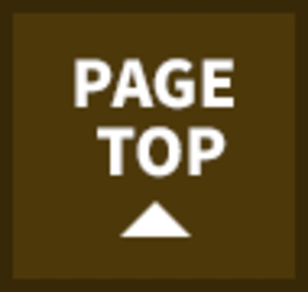 PAGE TOP ▲