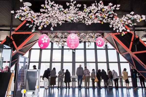 メインデッキ「東京タワーSAKURA EASTER」