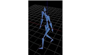 Biometric Measurement Body Motion