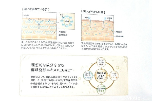 アルケミー化粧品の成分・VEGAL