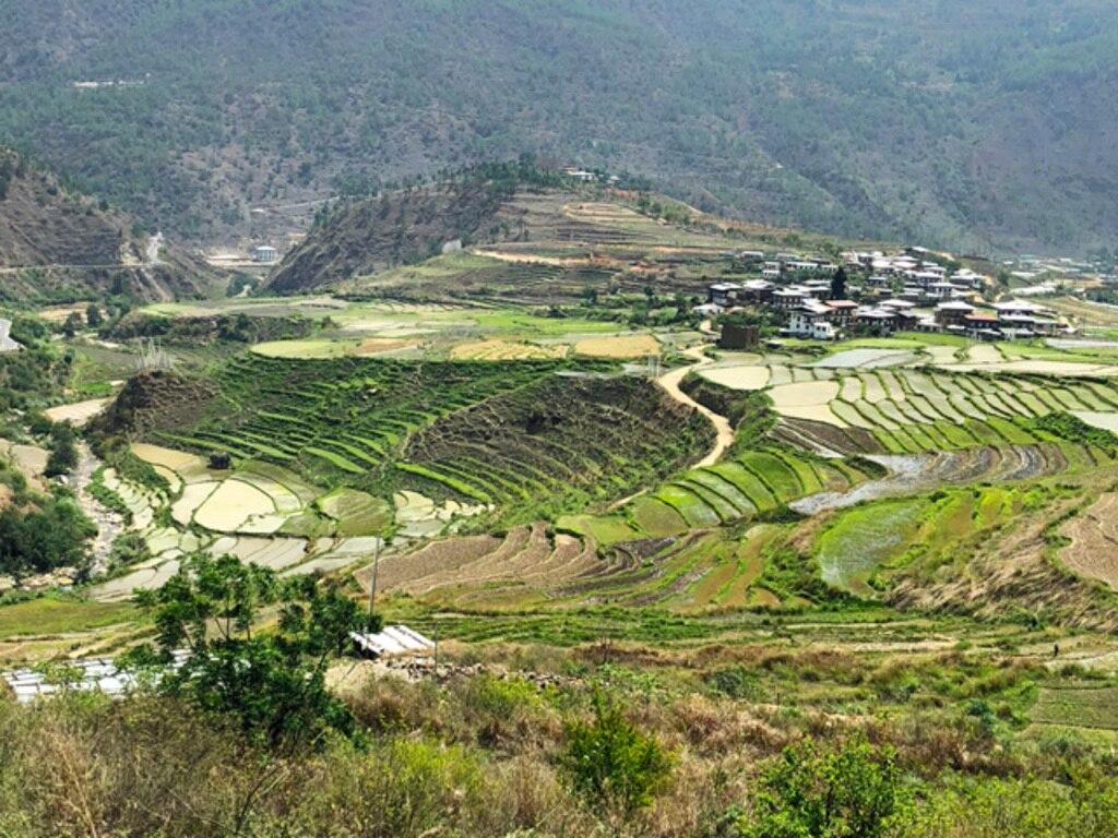 MIHARAS設置先:ブータン王国 農村・農業開発支援
