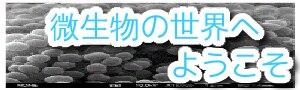 kk-banner.png20180731.png