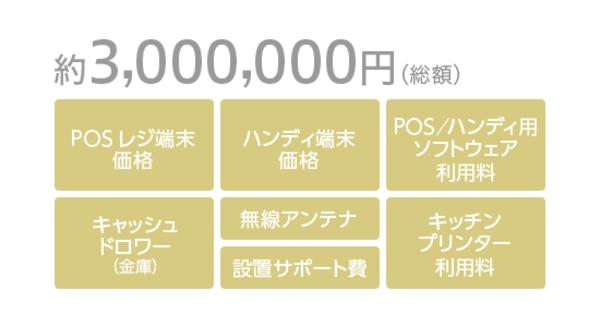 約300万円