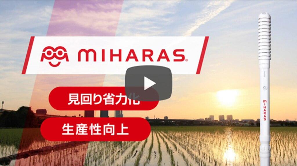 ニシム動画チャンネル「ミハラス」