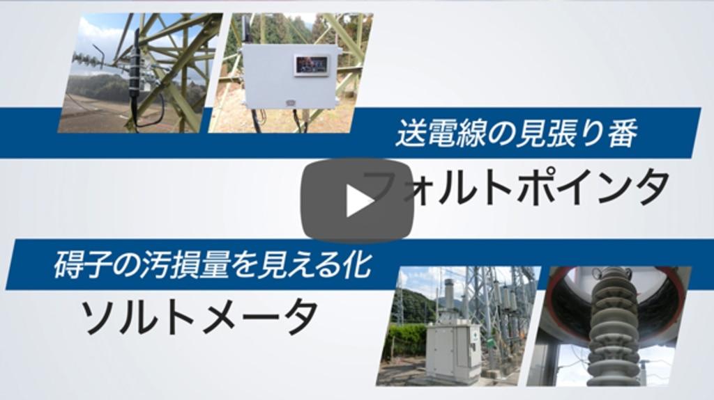 ニシム動画チャンネル「フォルトポインタ・ソルトメータ」