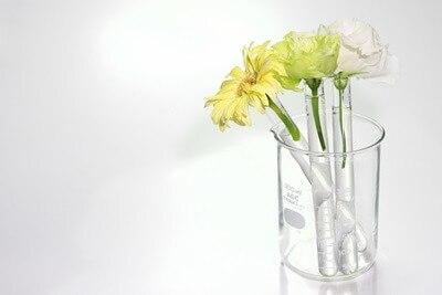 美白化粧水の美白成分