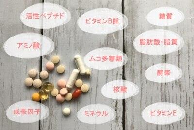 プラセンタの栄養素
