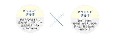 ビタミンC誘導体、ビタミンE誘導体
