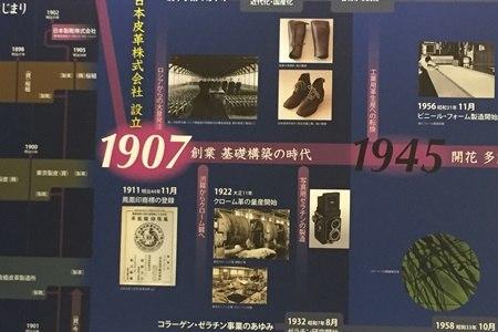 ニッピコラーゲンの歴史