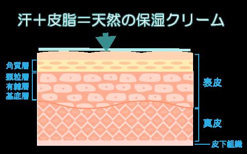 天然の保湿クリーム
