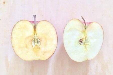 リンゴ幹細胞配合 アビエルタの美容液